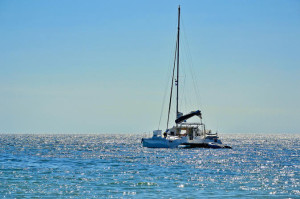 dolphin-and-seal-catamaran-cruise-from-walvis-bay-in-swakopmund-157580