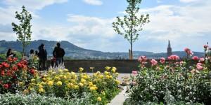 Sehenswürdigkeiten in Bern rosengarten-1