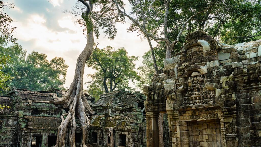 Angkor Wat, Kambodscha, Cambodia, Sieam Reap, Ta Prohm