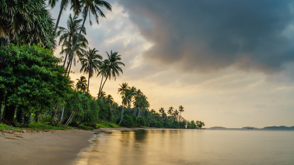 Rabbit Island, Palms, Sea, Clouds